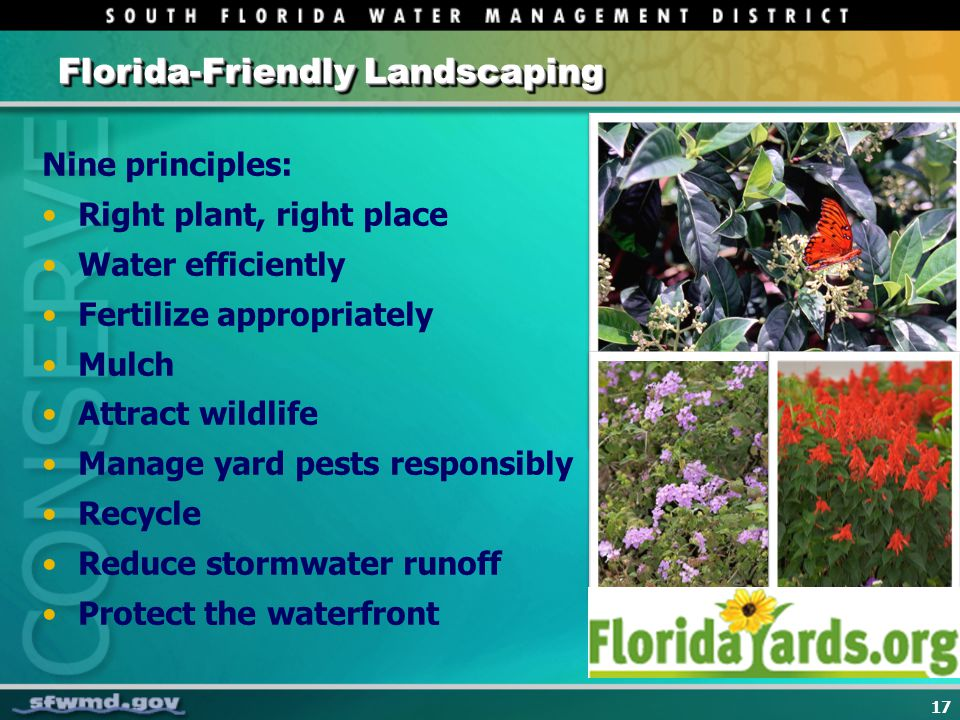 17 Florida-Friendly Landscaping Nine principles: Right plant, right place Water efficiently Fertilize appropriately Mulch Attract wildlife Manage yard pests responsibly Recycle Reduce stormwater runoff Protect the waterfront