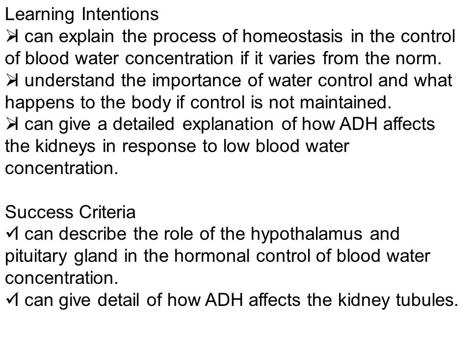 Learning Intentions I can explain the process of homeostasis in the control of blood water concentration if it varies from the norm. I understand the