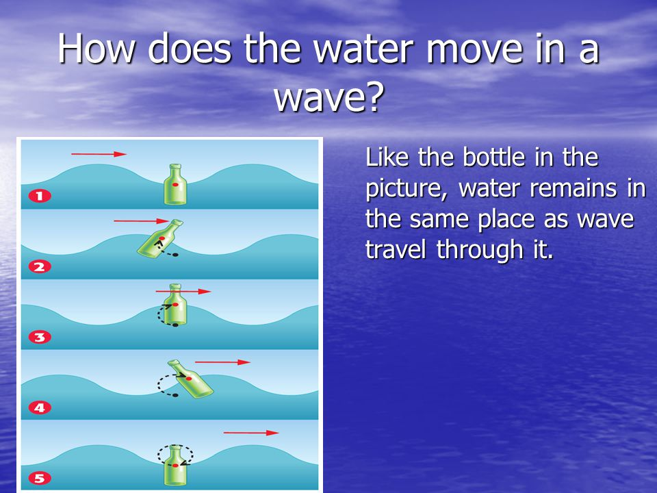 How does the water move in a wave? Like the bottle in the picture, water remains in the same place as wave travel through it.