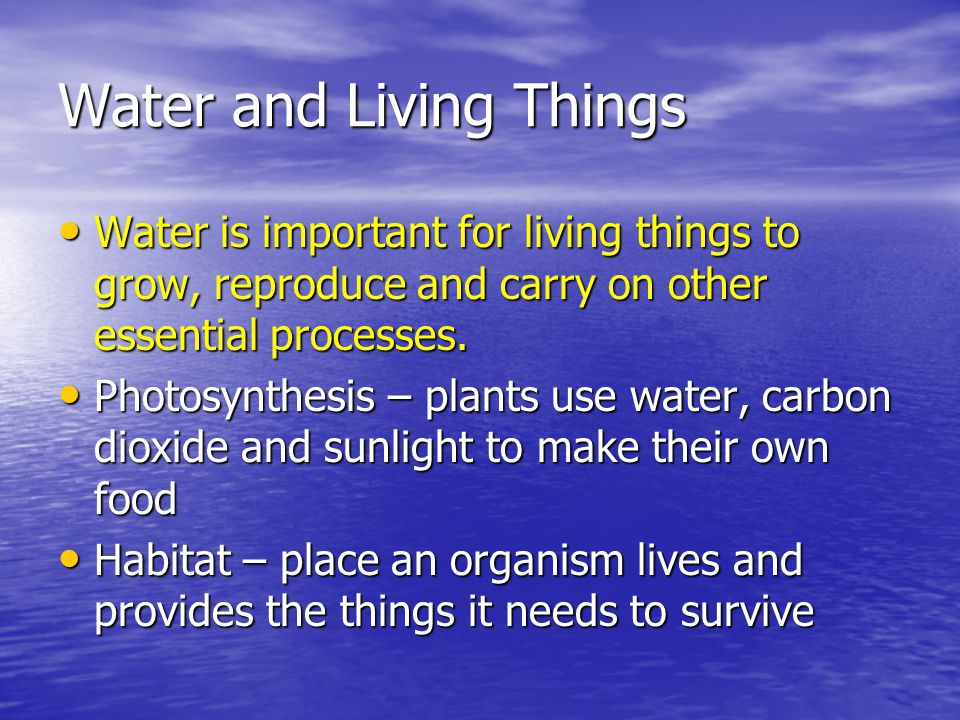 Water and Living Things Water is important for living things to grow, reproduce and carry on other essential processes. Water is important for living