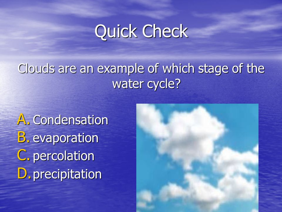Quick Check Clouds are an example of which stage of the water cycle? A. Condensation B. evaporation C. percolation D. precipitation