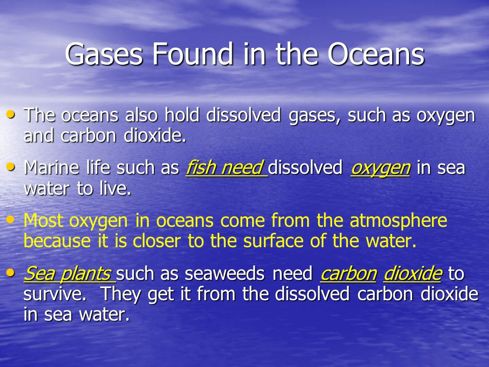 Gases Found in the Oceans The oceans also hold dissolved gases, such as oxygen and carbon dioxide. The oceans also hold dissolved gases, such as oxyge