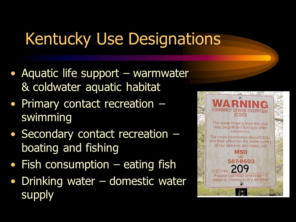 Kentucky Use Designations Aquatic life support – warmwater & coldwater aquatic habitat Primary contact recreation – swimming Secondary contact recreation – boating and fishing Fish consumption – eating fish Drinking water – domestic water supply