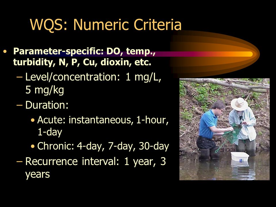 WQS: Numeric Criteria Parameter-specific: DO, temp., turbidity, N, P, Cu, dioxin, etc.
