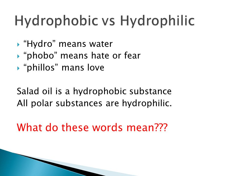 Hydrophilic substances will exhibit the property of adhesion, an attraction to water.