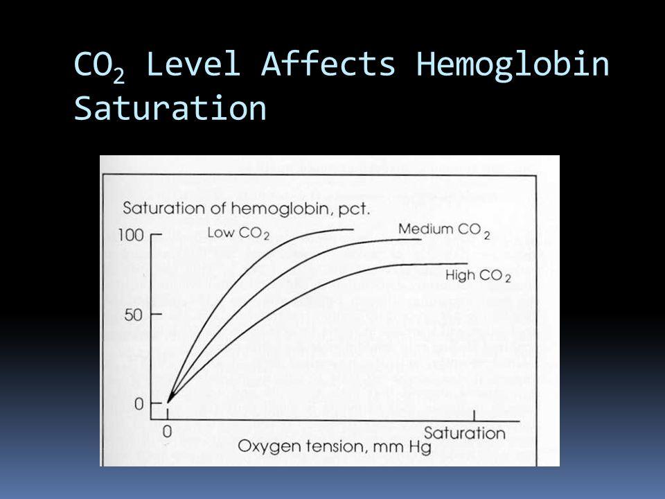 CO 2 Level Affects Hemoglobin Saturation