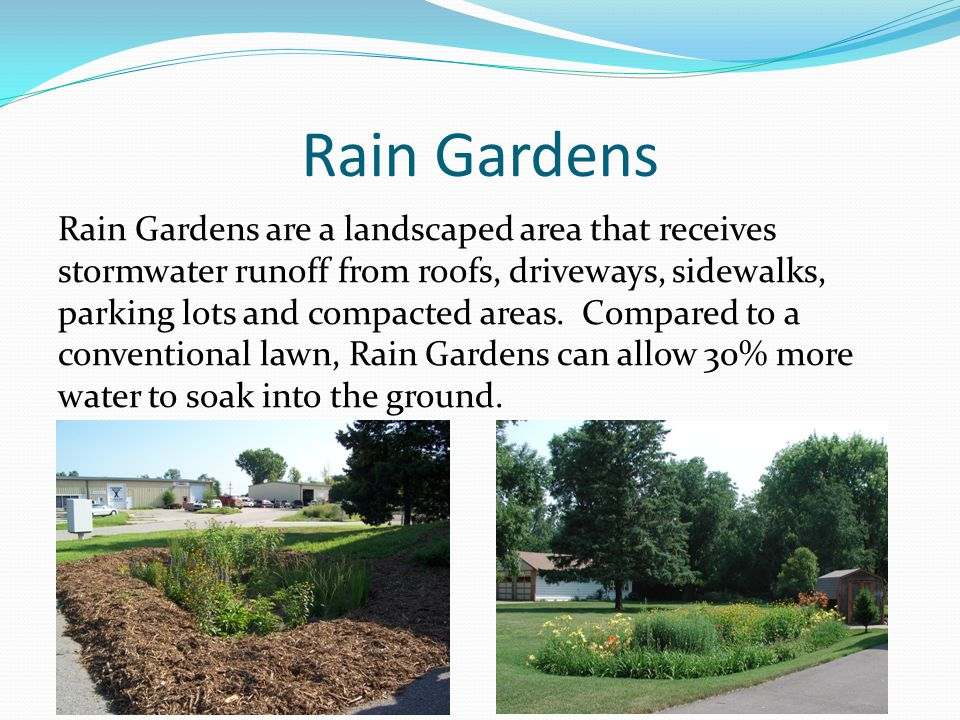 Rain Gardens Rain Gardens are a landscaped area that receives stormwater runoff from roofs, driveways, sidewalks, parking lots and compacted areas. Co