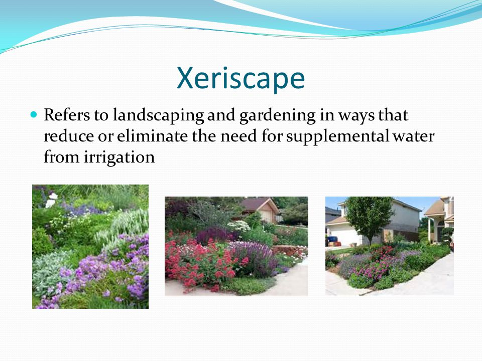 Xeriscape Refers to landscaping and gardening in ways that reduce or eliminate the need for supplemental water from irrigation