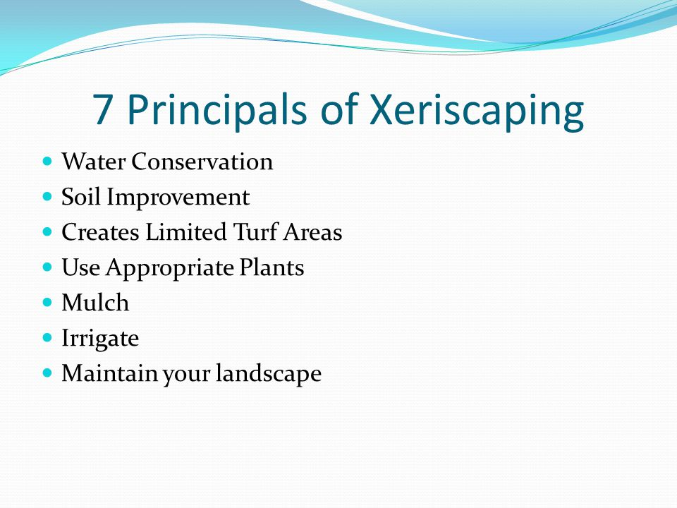 7 Principals of Xeriscaping Water Conservation Soil Improvement Creates Limited Turf Areas Use Appropriate Plants Mulch Irrigate Maintain your landscape