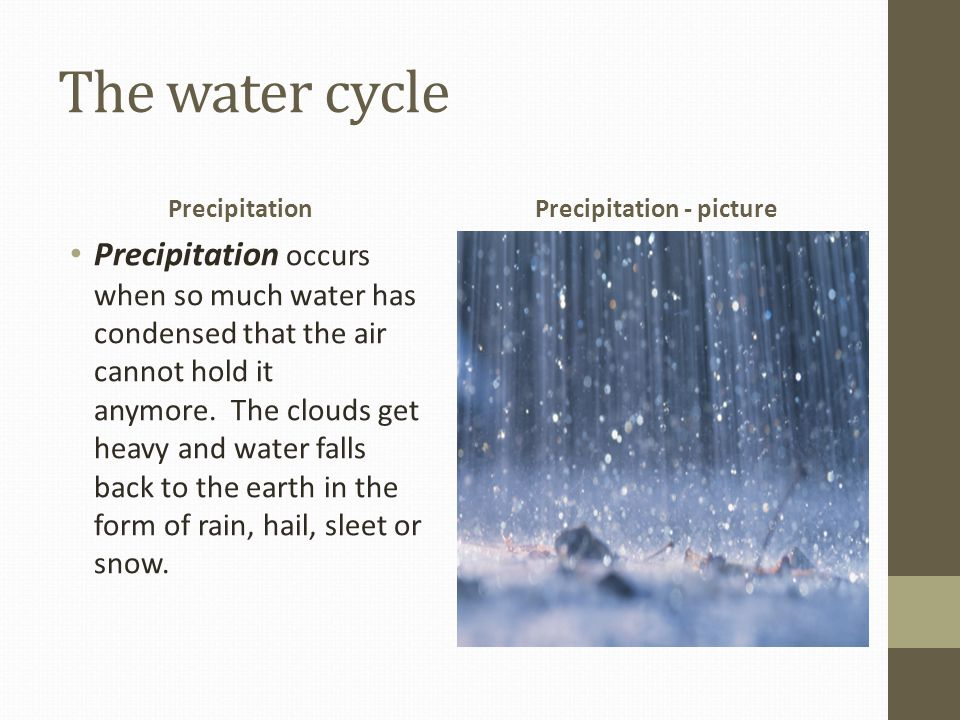 The water cycle Precipitation Precipitation occurs when so much water has condensed that the air cannot hold it anymore.