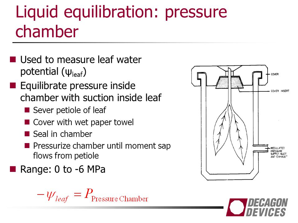 Liquid equilibration: pressure chamber Used to measure leaf water potential (ψ leaf ) Equilibrate pressure inside chamber with suction inside leaf Sev