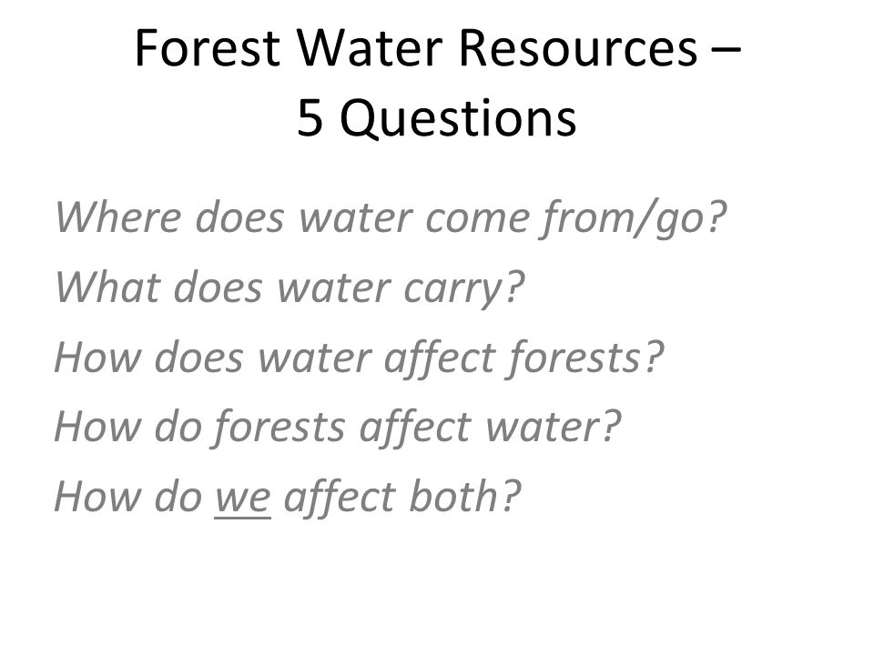 Forest Water Resources – 5 Questions Where does water come from/go.