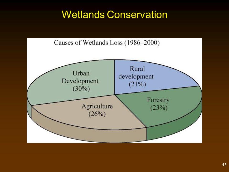 45 Wetlands Conservation
