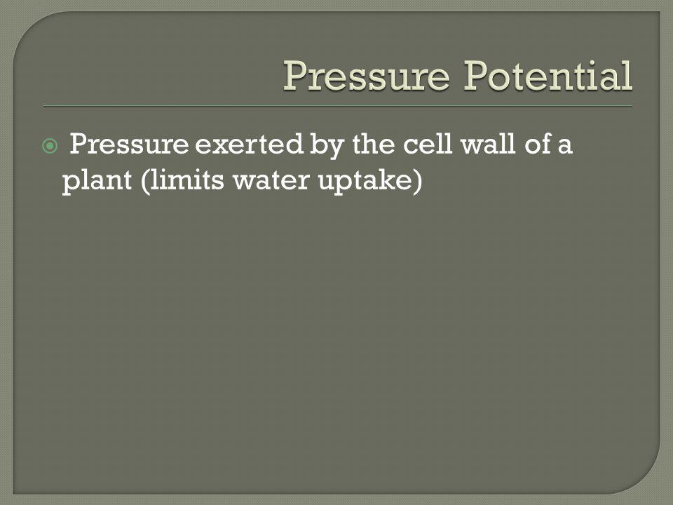 Pressure exerted by the cell wall of a plant (limits water uptake)