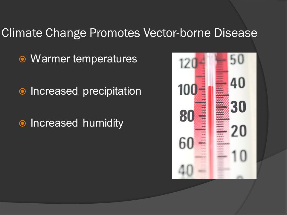 Climate Change Promotes Vector-borne Disease Warmer temperatures Increased precipitation Increased humidity