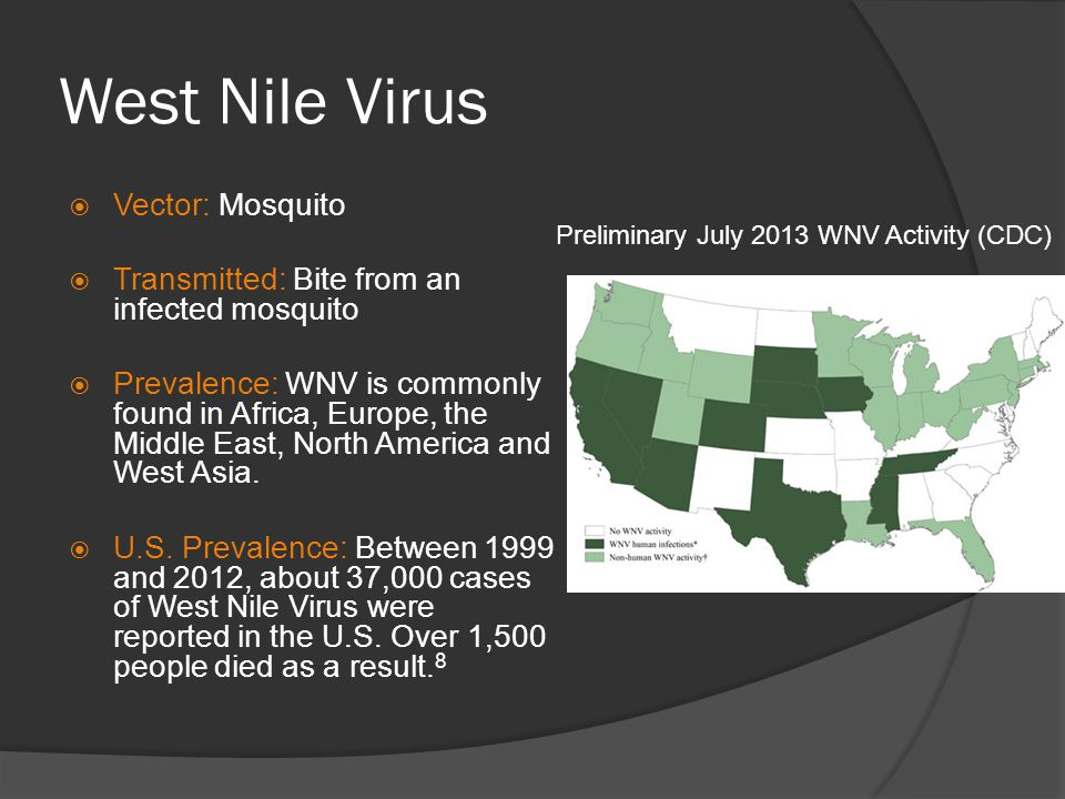 West Nile Virus Vector: Mosquito Transmitted: Bite from an infected mosquito Prevalence: WNV is commonly found in Africa, Europe, the Middle East, Nor