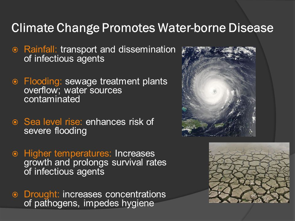Climate Change Promotes Water-borne Disease Rainfall: transport and dissemination of infectious agents Flooding: sewage treatment plants overflow; wat