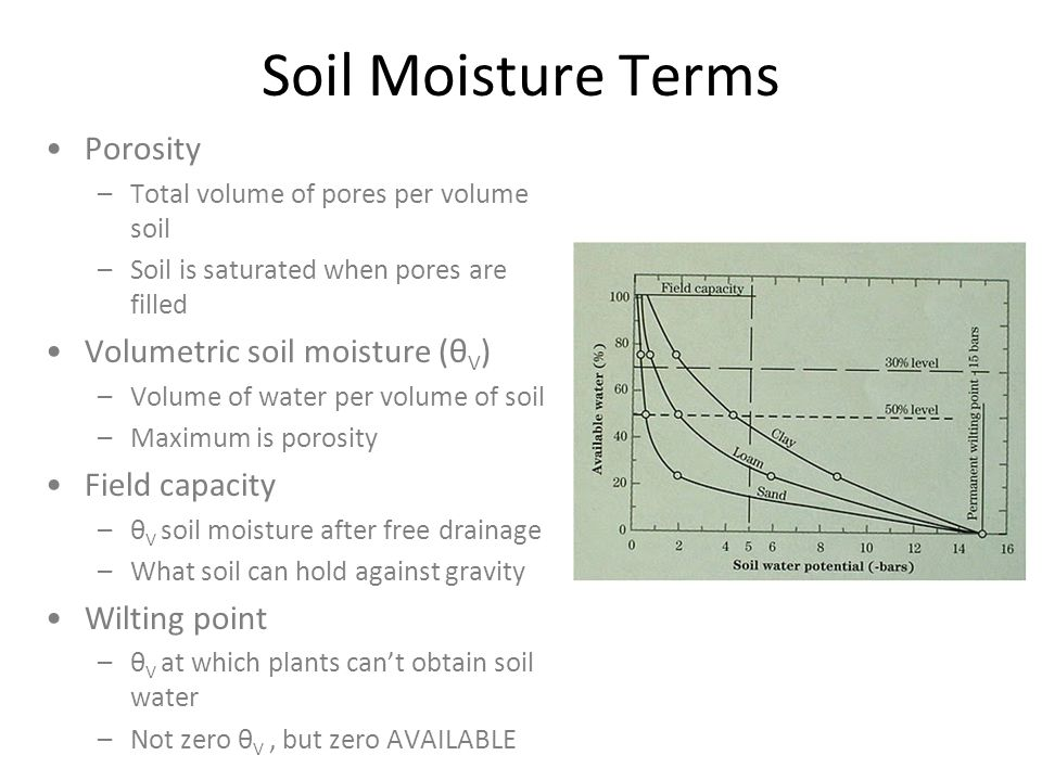 Soil Moisture Terms Porosity –Total volume of pores per volume soil –Soil is saturated when pores are filled Volumetric soil moisture (θ V ) –Volume of water per volume of soil –Maximum is porosity Field capacity –θ V soil moisture after free drainage –What soil can hold against gravity Wilting point –θ V at which plants cant obtain soil water –Not zero θ V, but zero AVAILABLE