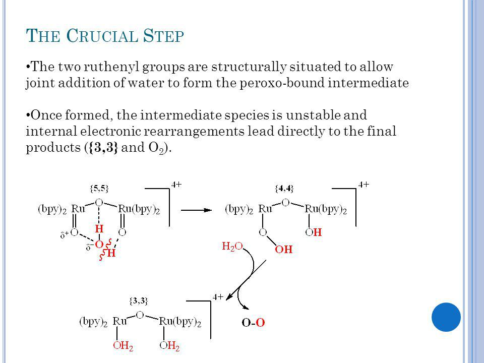 T HE C RUCIAL S TEP The two ruthenyl groups are structurally situated to allow joint addition of water to form the peroxo-bound intermediate Once formed, the intermediate species is unstable and internal electronic rearrangements lead directly to the final products ( {3,3} and O 2 ).