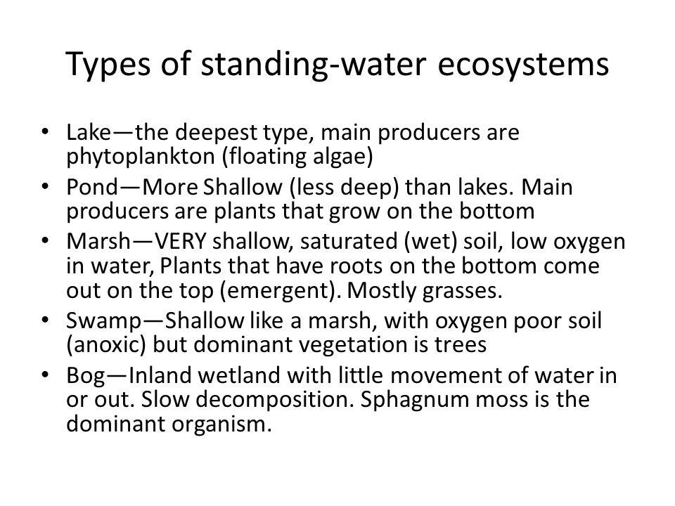 Types of standing-water ecosystems Lakethe deepest type, main producers are phytoplankton (floating algae) PondMore Shallow (less deep) than lakes. Ma