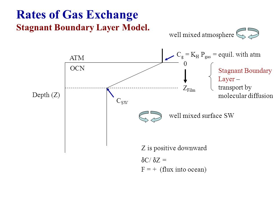 Rates of Gas Exchange Stagnant Boundary Layer Model.