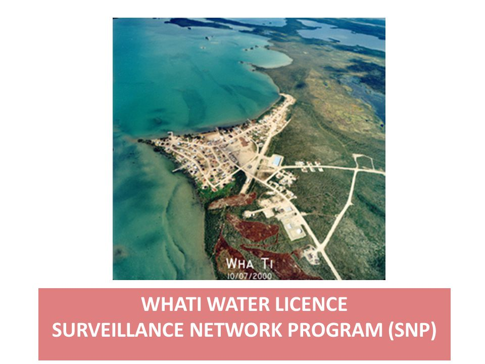 WHATI WATER LICENCE SURVEILLANCE NETWORK PROGRAM (SNP)