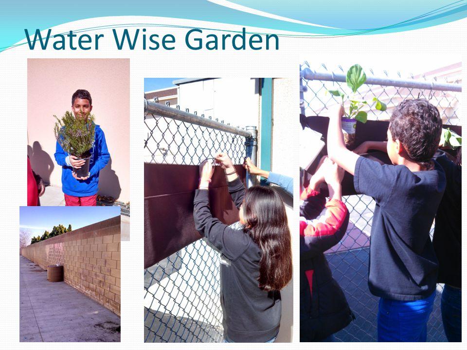 Water Wise Garden