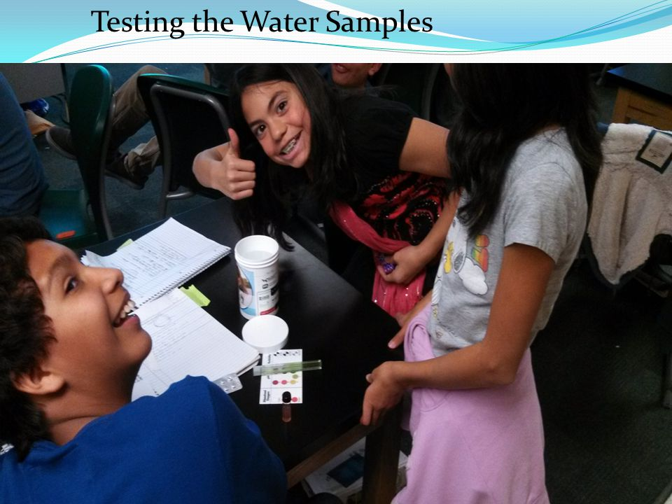 Testing the Water Samples