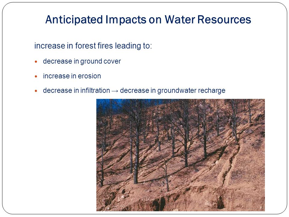 increase in forest fires leading to: decrease in ground cover increase in erosion decrease in infiltration decrease in groundwater recharge Anticipated Impacts on Water Resources