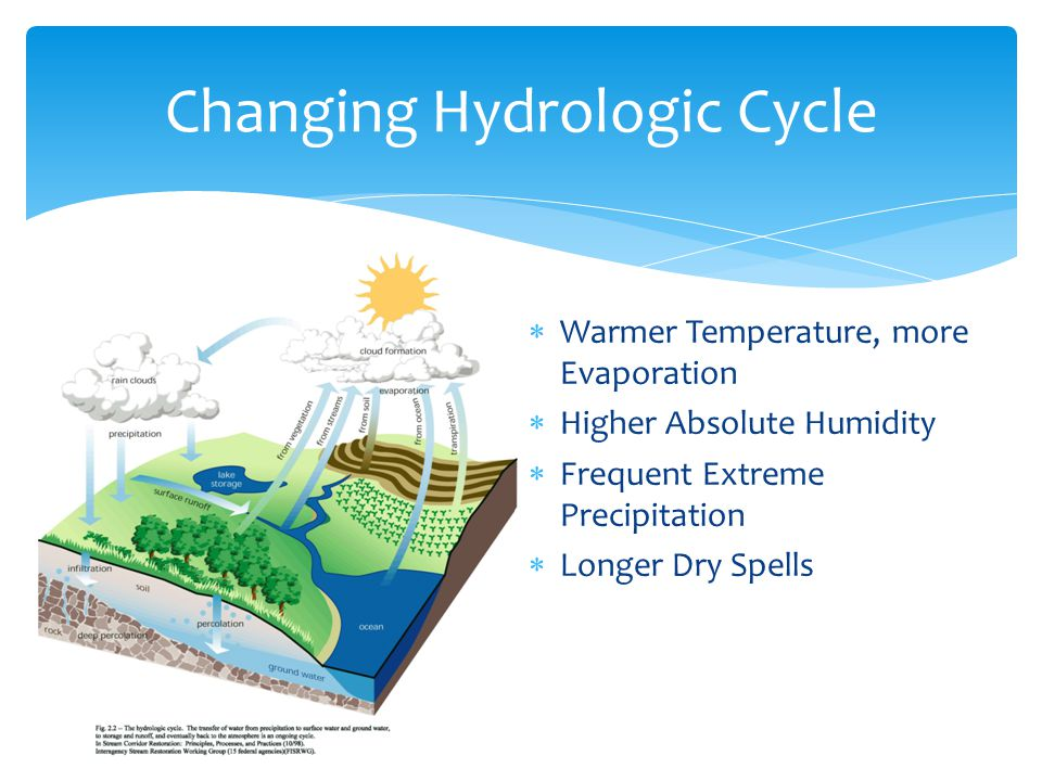 Warmer Temperature, more Evaporation Higher Absolute Humidity Frequent Extreme Precipitation Longer Dry Spells Changing Hydrologic Cycle