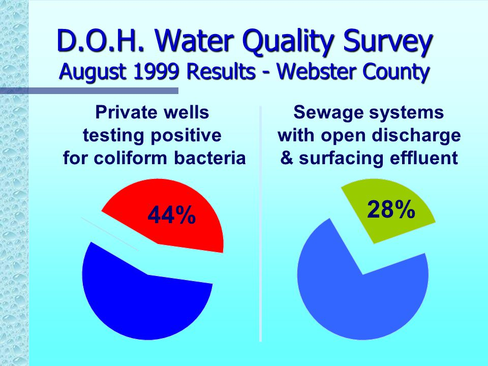 D.O.H. Water Quality Survey August 1999 Results - Webster County 44% Private wells testing positive for coliform bacteria 28% Sewage systems with open