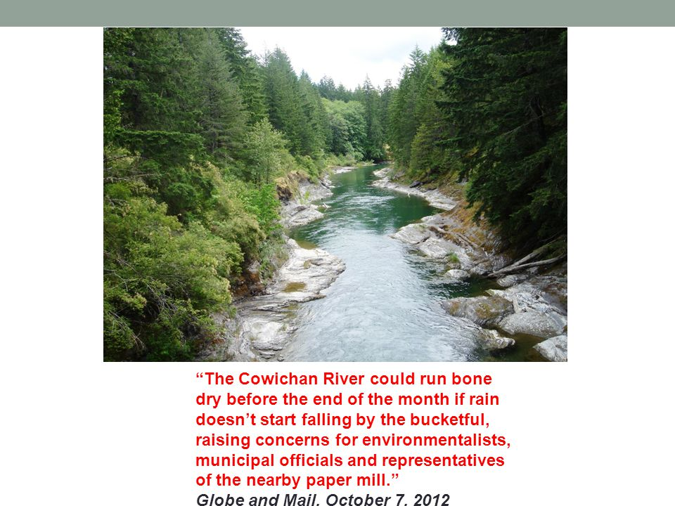 The Cowichan River could run bone dry before the end of the month if rain doesnt start falling by the bucketful, raising concerns for environmentalists, municipal officials and representatives of the nearby paper mill.