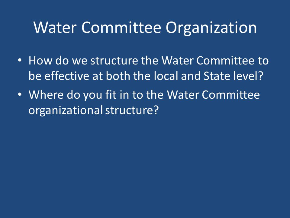 Water Committee Organization How do we structure the Water Committee to be effective at both the local and State level.