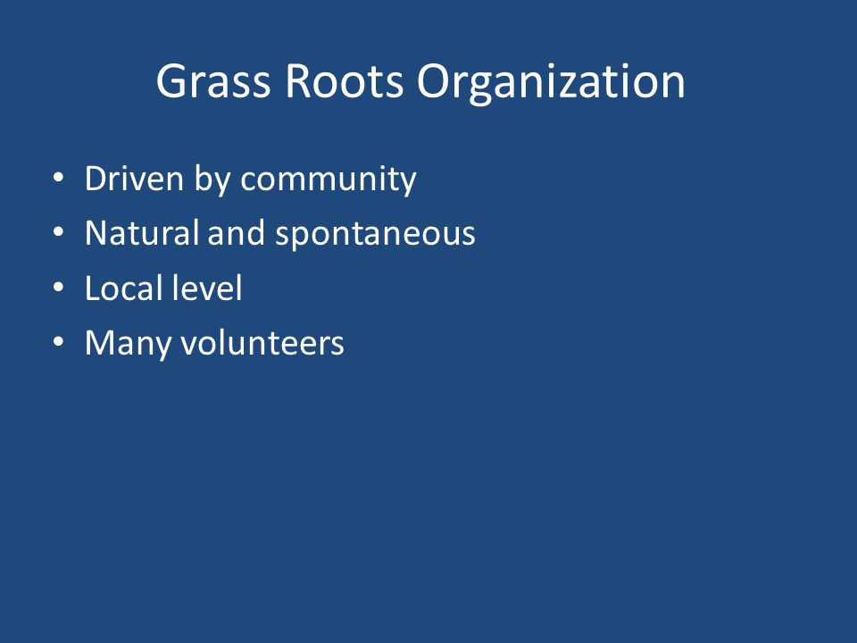 Grass Roots Organization Driven by community Natural and spontaneous Local level Many volunteers