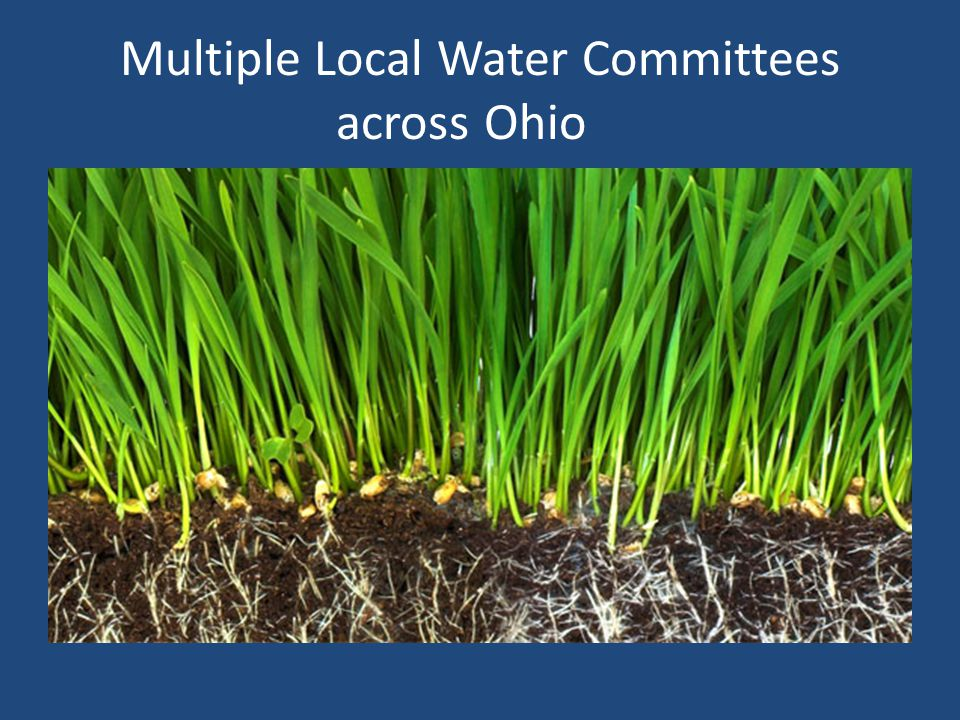 Multiple Local Water Committees across Ohio