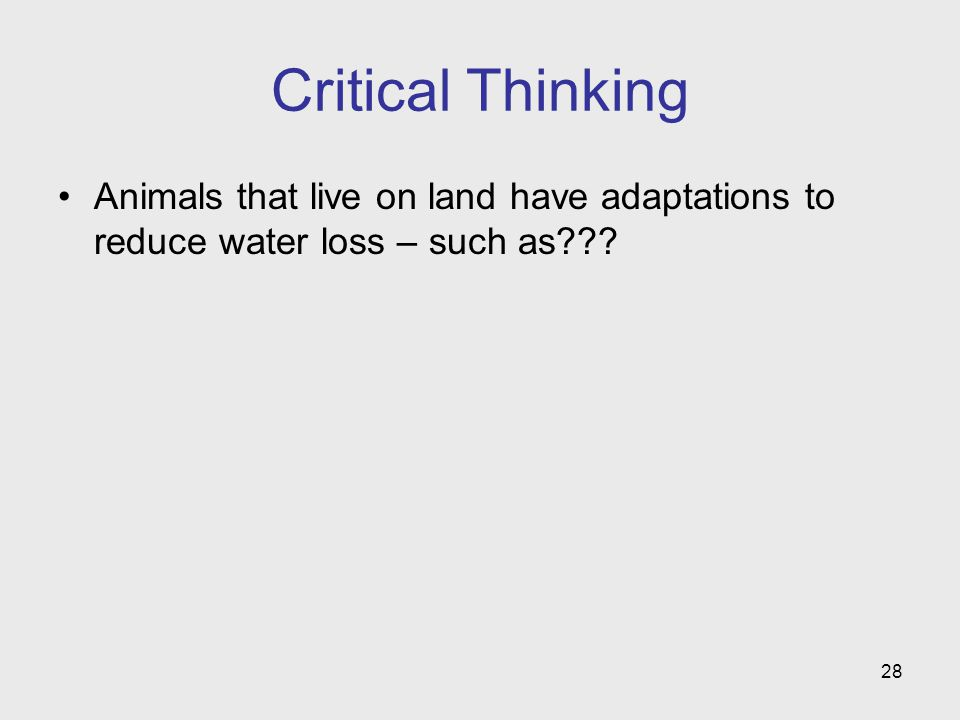 28 Critical Thinking Animals that live on land have adaptations to reduce water loss – such as???