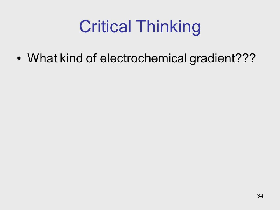34 Critical Thinking What kind of electrochemical gradient???