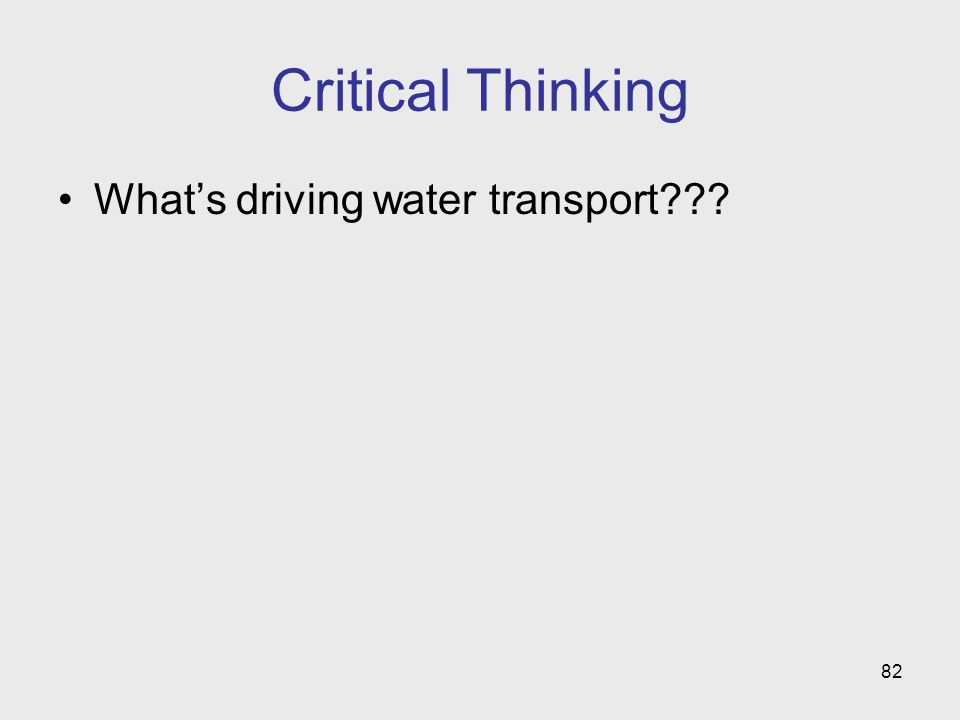 82 Critical Thinking Whats driving water transport???