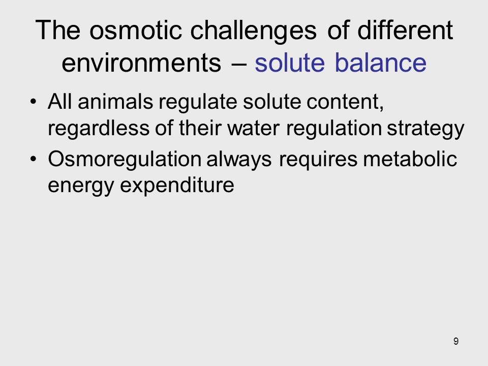 9 The osmotic challenges of different environments – solute balance All animals regulate solute content, regardless of their water regulation strategy