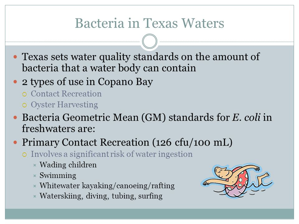 Bacteria in Texas Waters Texas sets water quality standards on the amount of bacteria that a water body can contain 2 types of use in Copano Bay Contact Recreation Oyster Harvesting Bacteria Geometric Mean (GM) standards for E.