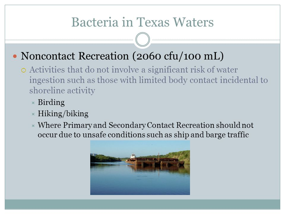 Bacteria in Texas Waters Noncontact Recreation (2060 cfu/100 mL) Activities that do not involve a significant risk of water ingestion such as those with limited body contact incidental to shoreline activity Birding Hiking/biking Where Primary and Secondary Contact Recreation should not occur due to unsafe conditions such as ship and barge traffic