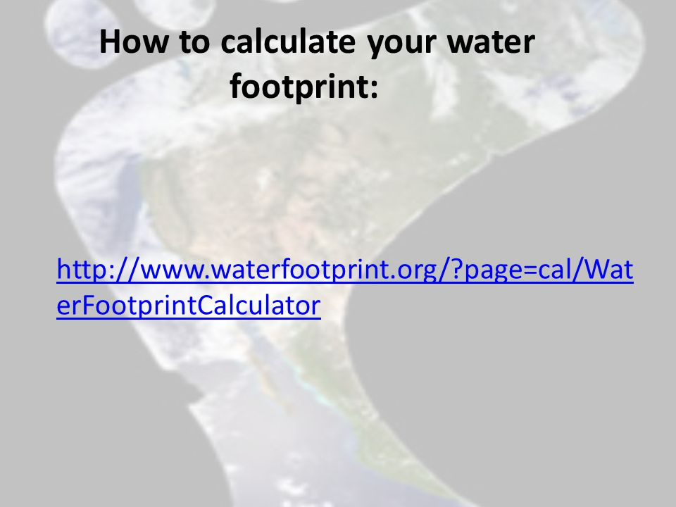 Example for calculating your water footprint ( tested by Lennart) Your total water footprint 756 cubic meter per year Cereal 71 Meat 254 Vegetable 28 Fruit 52 Dairy 180 Stimulant 13 Fat 4 Sugar 12 Eggs 8 Others 67