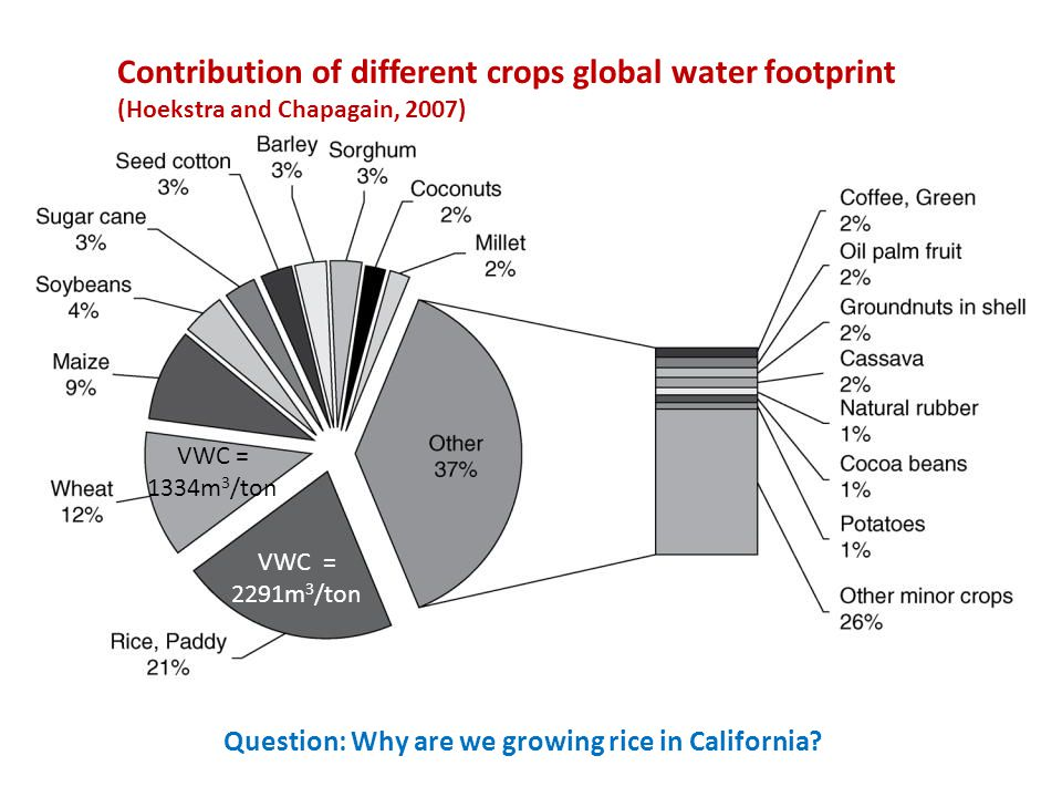 Contribution of different crops global water footprint (Hoekstra and Chapagain, 2007) VWC = 1334m 3 /ton VWC = 2291m 3 /ton Question: Why are we growing rice in California