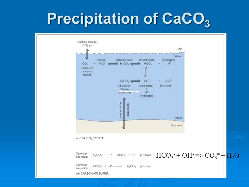 Precipitation of CaCO 3 ---- HCO 3 - + OH - => CO 3 = + H 2 O