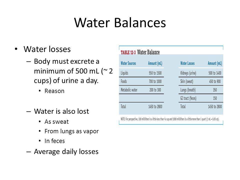 Fluid & Electrolyte Balance Dissociation of Salt in Water (continued) – Electrolyte Balance Major extracellular ions Major intracellular ions