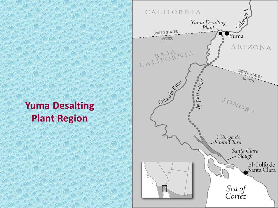 Yuma Desalting Plant Region