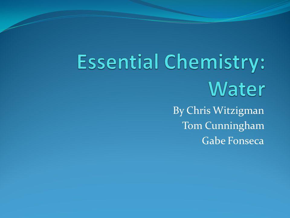By Chris Witzigman Tom Cunningham Gabe Fonseca