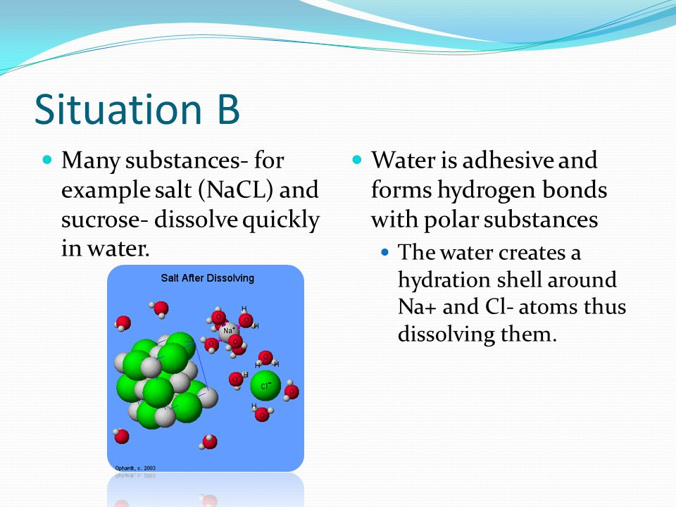 Situation B Many substances- for example salt (NaCL) and sucrose- dissolve quickly in water. Water is adhesive and forms hydrogen bonds with polar sub