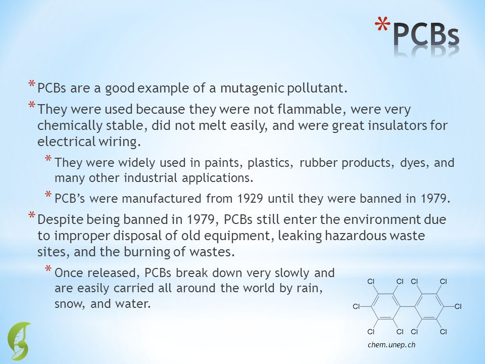 * PCBs are a good example of a mutagenic pollutant. * They were used because they were not flammable, were very chemically stable, did not melt easily