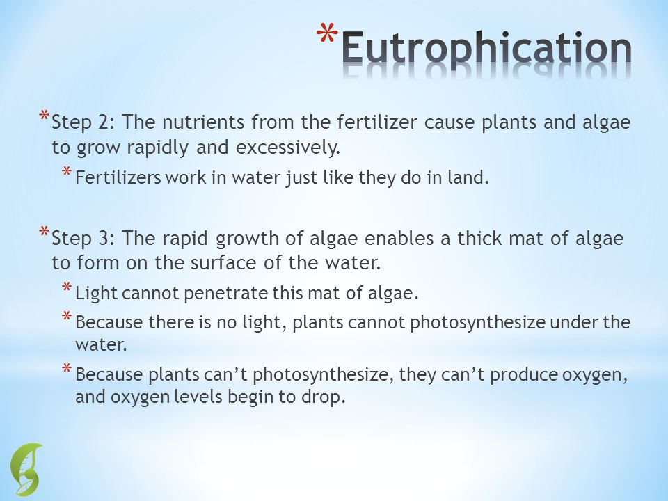 * Step 2: The nutrients from the fertilizer cause plants and algae to grow rapidly and excessively. * Fertilizers work in water just like they do in l